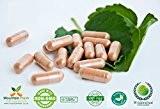 Café Vert Haricot Pack D'échantillons De 500 Mg D'20 Capsules